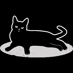 Niedliche schwarze Katze