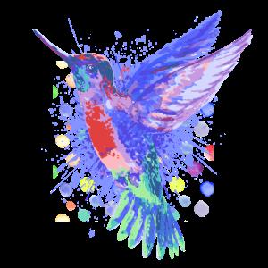 Kolibri Vogel - Schöner bunter Vogel