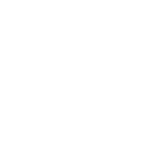 Calisthenics Street Workout Evolution Fitness