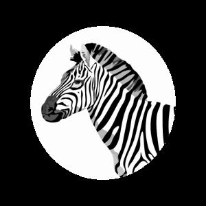 Zebra Head - Zebra Kopf