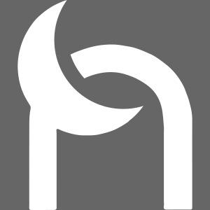 Nocturnal n logo white