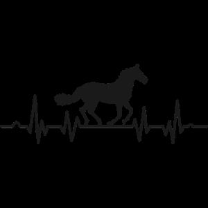 Pferde, Herzschlag Pferd Reiter EKG