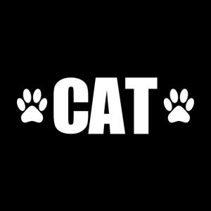 Best Cat Dad Katze Katzen Shirt T-Shirt Geschenk