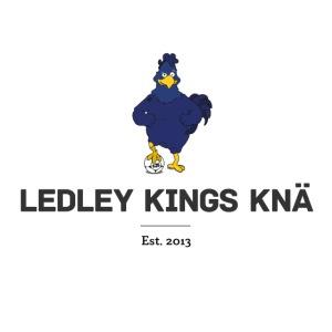 Logo med text