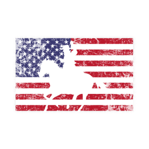 Cowboy Amerika