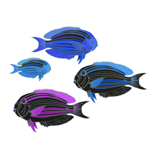 Meerestier Fische blau