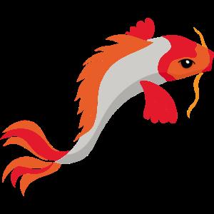 Koi Fisch dekorativ