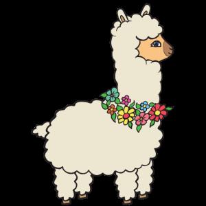 Alpaka mit Blumen.