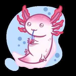 Axolotl x Bubbletea