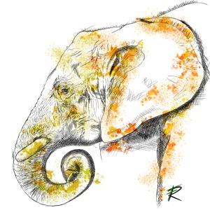 Elephant 2 color