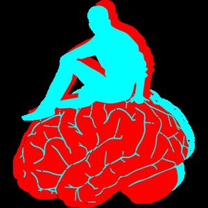 Gehirn, farbiges Gehirn, denkendes Gehirn, Hirn