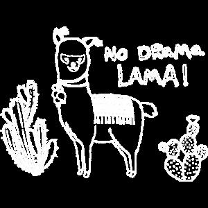 No drama Lama! - mit Alpaka und Kakteen