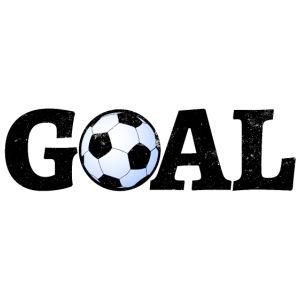 00048 Soccer Goal