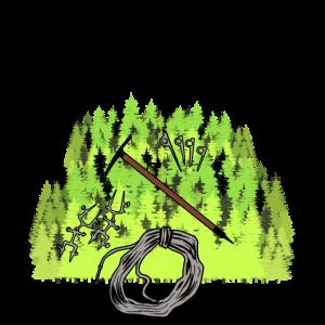 Wald klettern Berge Natur Oekologie Baeume