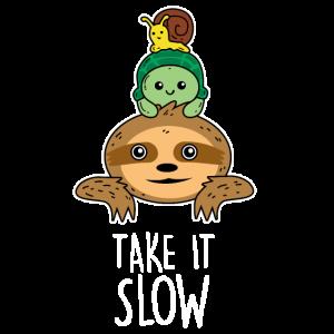 Faultier Schildkröte Schnecke Take it slow