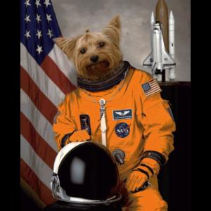 Yorkshire Terrier Besitzer Liebhaber Astronaut