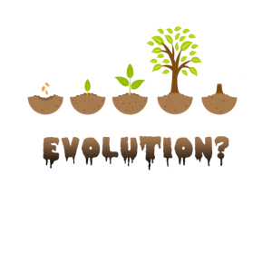 Evolutionsbaum