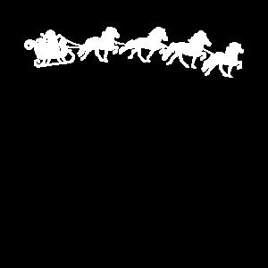Islaender Weihnachten Schlitten Islandpferd