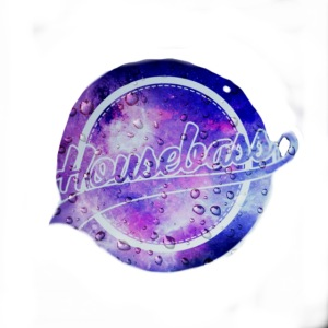 Housebass easy logo