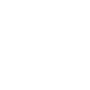 Master Student Diplom