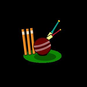 Cricket baseball sport ballsport schläger geschenk