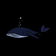 baleine sereine atelier kôta illustration dessins boutique produits artist