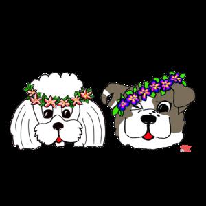 Fräulein Wolke und Kolumbus mit Blumenkranz