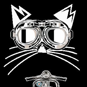Bergkatze Scooter Katze mit Retro Brille