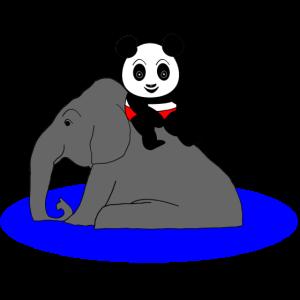 Panda rutscht vom Elefanten