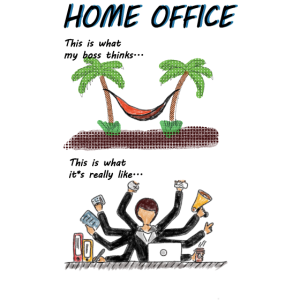 Home Office Reality