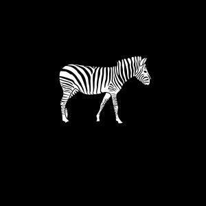 1 Zebra Abstand halten