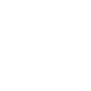 Junggesellen Abschieds Party