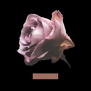 Lovevibes Retro Rose