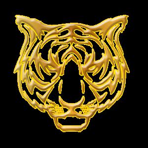 tiger gold kopf head zeichnung draw linien cool