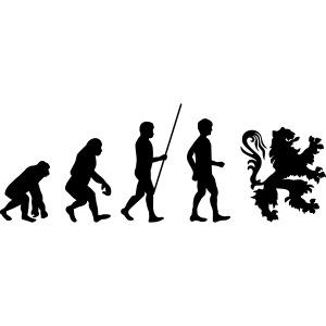 évolution flandre