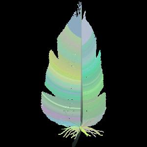 farbige Feder