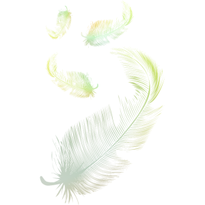 Schöne grün-blaue Federn aus Daunen