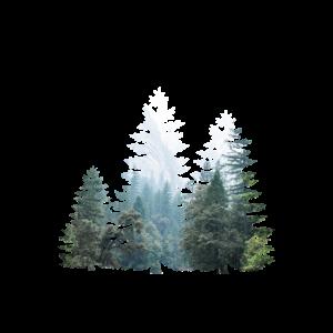 Fenster in die Natur