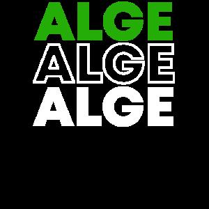 ALGE Koenig slot casino shirt geschenk merch