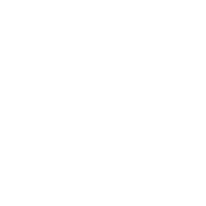 gamer spiel controller team krone