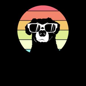 Dog Hund Sommer Sonnebrille Geschenkidee