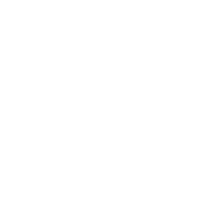 Zoom Universitätshemd