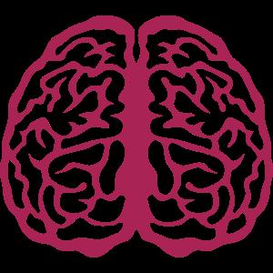 Gehirn Gehirn Gesicht 3 8