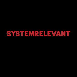 teamistsystemrelevant