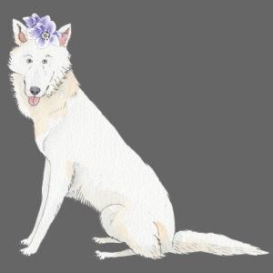 White Schwiss shehperd with flower
