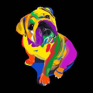 Bulldoge Hund
