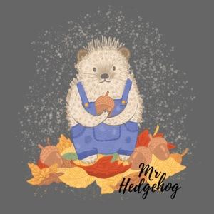 Mr Hedgehog