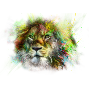 Lion Löwe Colourful T-Shirt