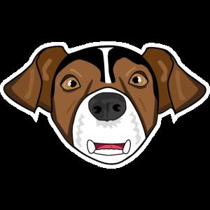 Hund Hundekopf