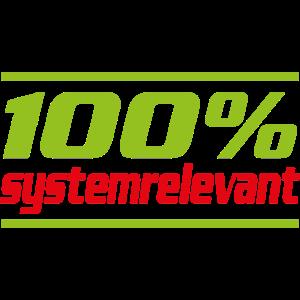 100% systemrelevant